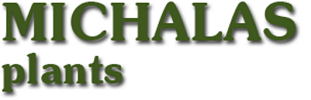 Michals plants logo